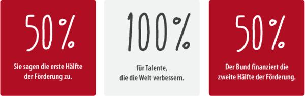 Grafische Darstellung, dass sich die private Förderer und der Bund das Deutschlands zu je 50 % teilen.tipendiums .