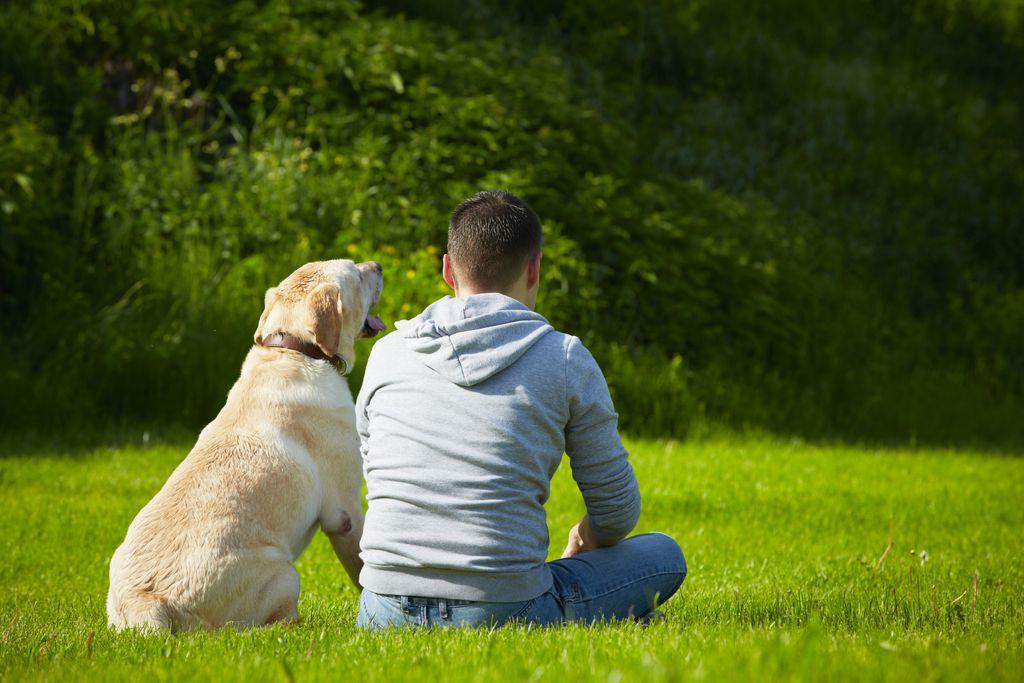 Mann sitzt mit Hund auf der Wiese