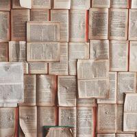 Blick auf viele offene Bücher, repräsentieren offenes Wissen - offene Wissenschaft - open knowledge