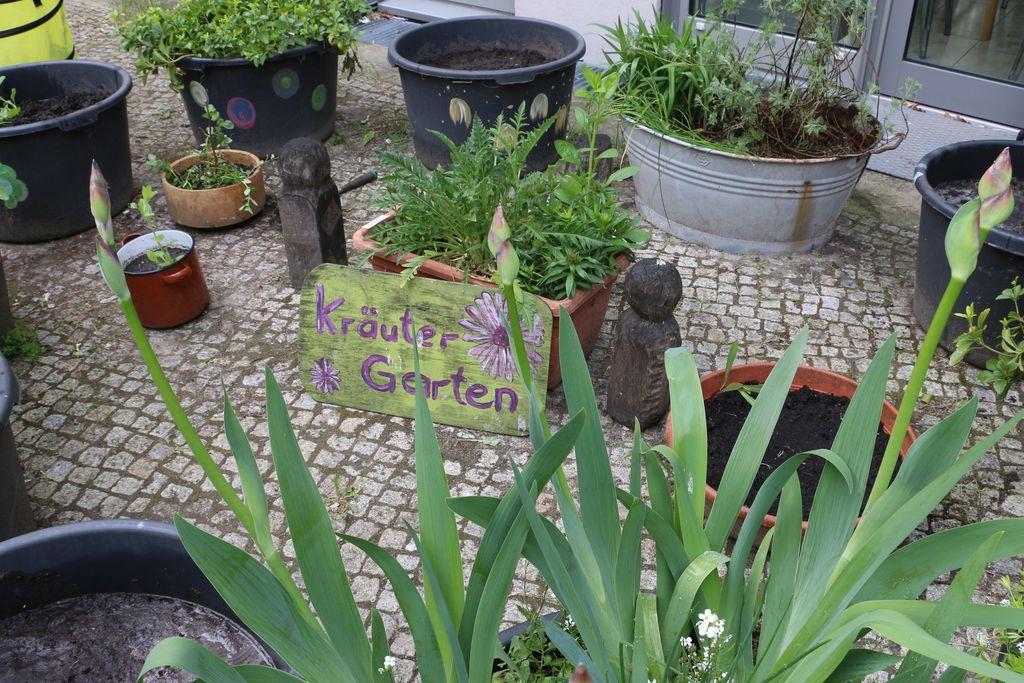 Vergrößern: Kräutergarten im Innenhof der ASH