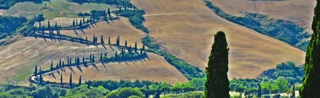 Toskanische Landschaft mit einer sich windenden Serpentinenstraße